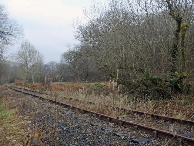 Disused railway near Llangeinor and Bettws