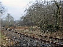 SS9086 : Disused railway near Llangeinor and Bettws by eswales
