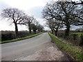 SJ3772 : Coalpit Lane near Lea-by-Backford by Jeff Buck