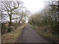 SJ3872 : Bridle Lane, Lea-by-Backford by Jeff Buck