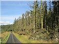 H4981 : Mast road, Gortin Glen Forest by Richard Webb