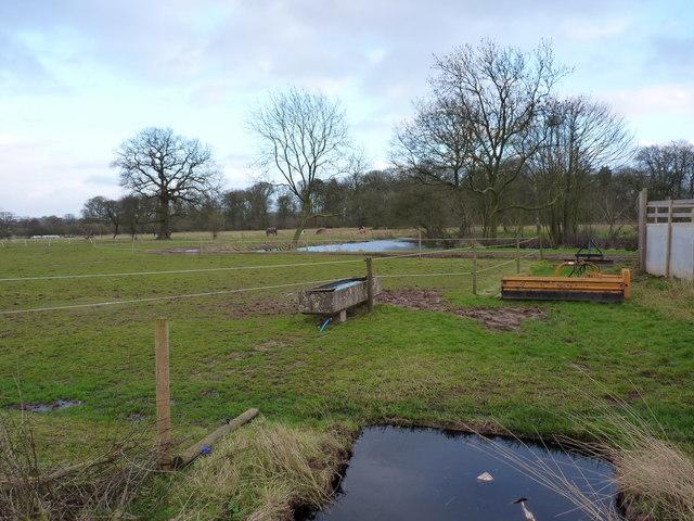 Fields and a pool near Ashwoodhead Farm