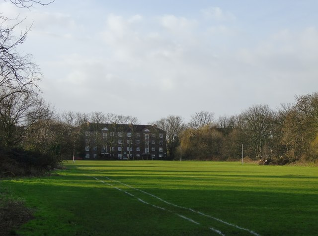 Playing fields at Barn Elms