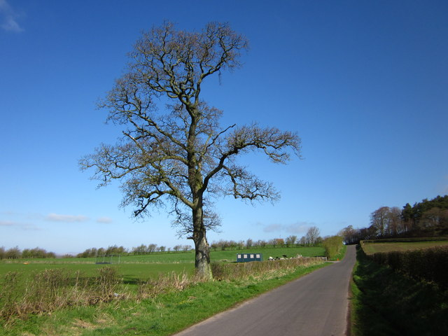 Road to Longtown