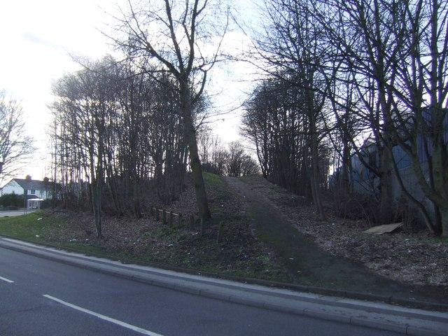 Disused railway embankment - Stringe's Lane