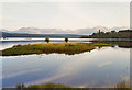 NN1887 : Loch Lochy from Bunarkaig by Nigel Brown