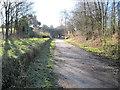 SJ9485 : High Lane railway station (site) by Nigel Thompson