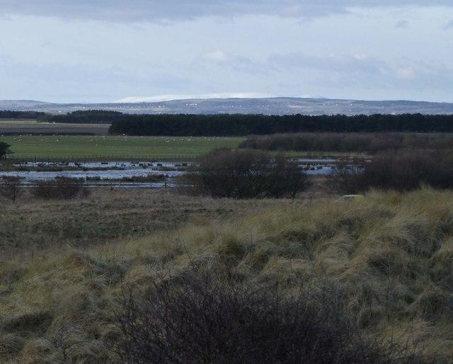 View from Druridge Links