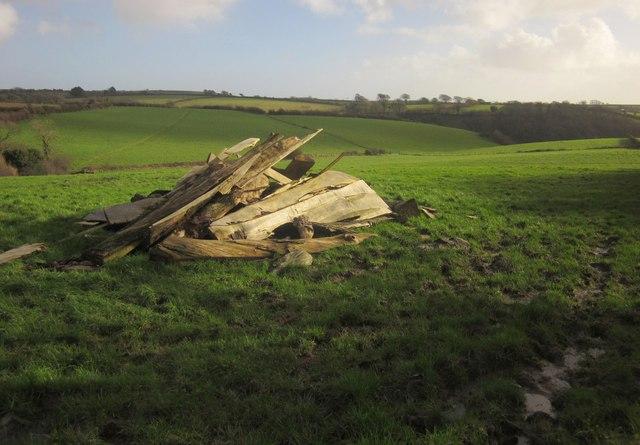 Pile of wood north of East Allington