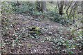 SO7536 : Ragged Stone Hill Spring, Eastnor by Bob Embleton