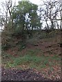 SW8439 : Former quarry in Trelissick North Wood by David Smith