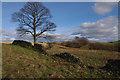 SD5593 : Hay Fell by Ian Taylor