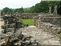 NY5415 : Shap Abbey ruins by Rose and Trev Clough