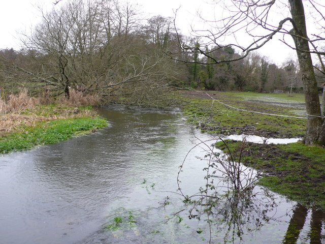 River Piddle