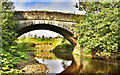 NY5474 : Lyne Bank Bridge by David Liddle