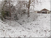 ST3091 : Snowy issue on the corner of Hargreaves Drive and Edison Ridge, Malpas, Newport by Jaggery