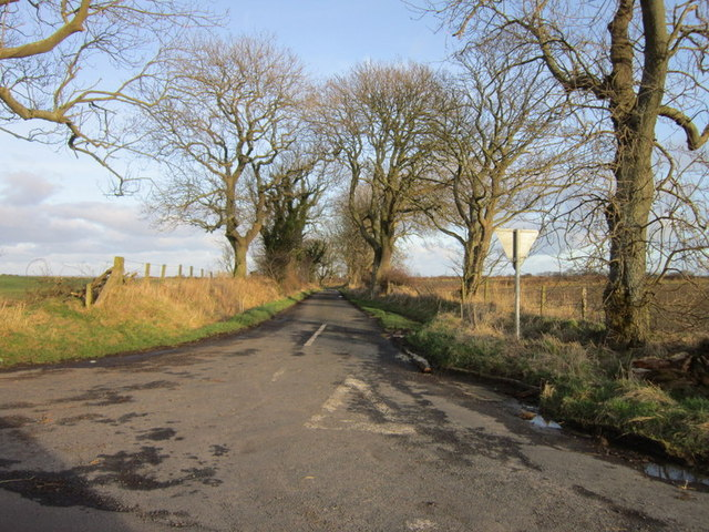 The Road From Gloster Hill