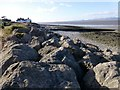 NY1256 : Skinburnessbank Coastal View West by Rude Health
