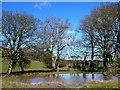 SY8283 : Pond at Belhuish Farm by Nigel Mykura