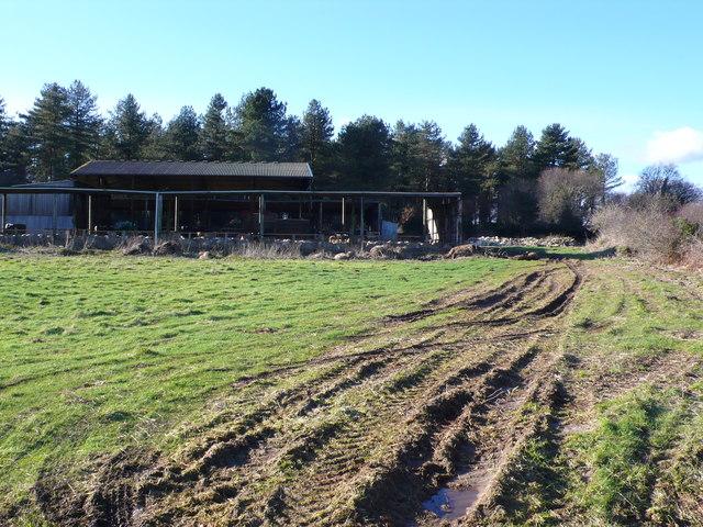 Barn at North Wood