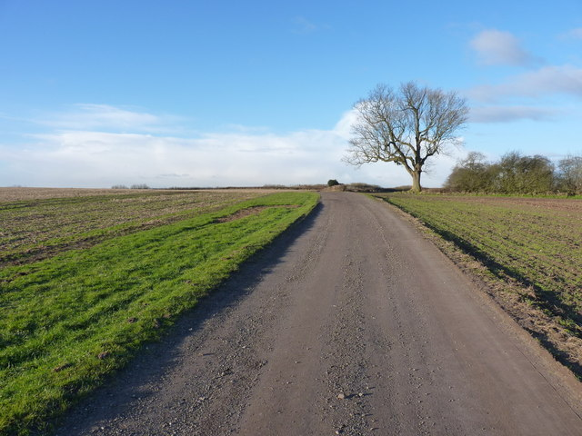 Bridleway towards Old Park Farm