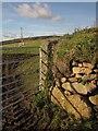 SX7786 : Gateway near Doccombe Cross by Derek Harper