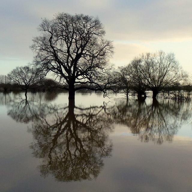 Flooded Tirley Marsh, again, 3