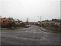 NT9953 : Castle Drive, Berwick upon Tweed by Graham Robson
