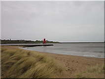 NZ3668 : Looking towards North Shields from South Shields by Ian S