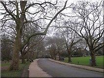 TQ3187 : Path to Green Lane Gate, Finsbury Park by David Anstiss