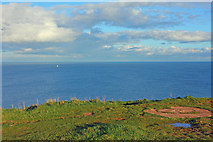 SX9456 : View from Berry Head by Wayland Smith