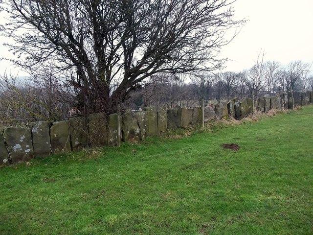 Stone Slab Walling near Rowsley Bar Farm