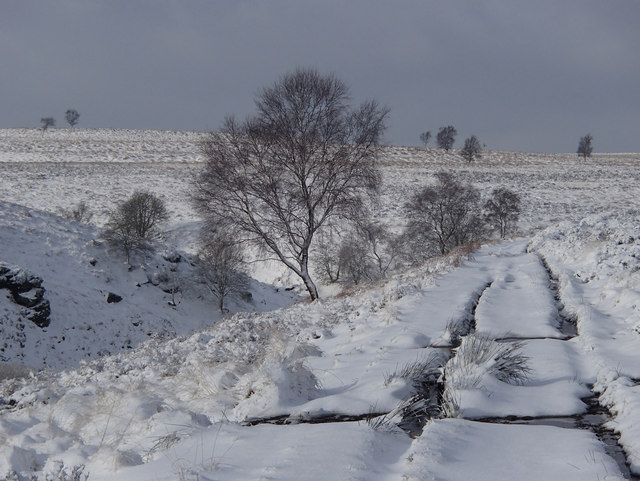 Track by Bar Brook in winter conditions