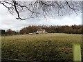 NZ2153 : Ivy Cottage near Beamish by Robert Graham