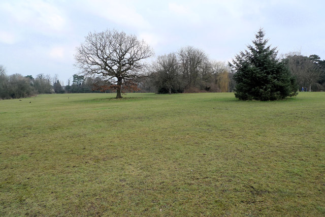 Open space in Bruntwood Park