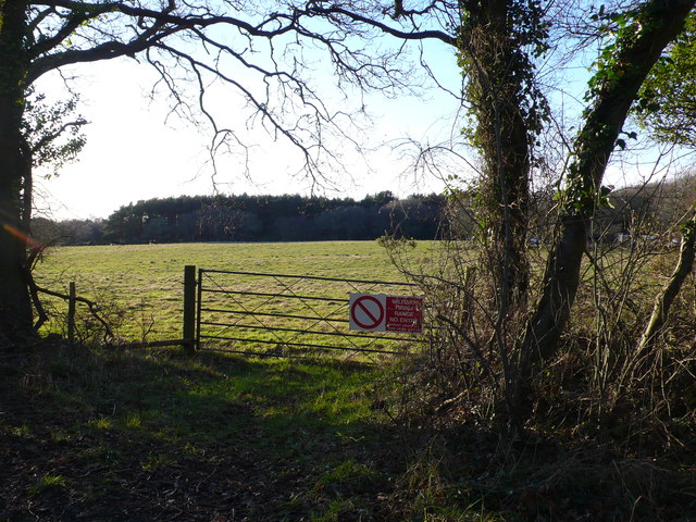 Field at West Holme Manor