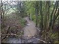 SK4982 : Harthill Feeder - Broad Bridge Dyke by Karl Smt
