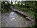 SK4881 : Footbridge over Broad Bridge Dyke by Karl Smt