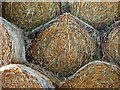 TQ1727 : Straw bales, Coltstaple Farm near Horsham (2) by nick macneill