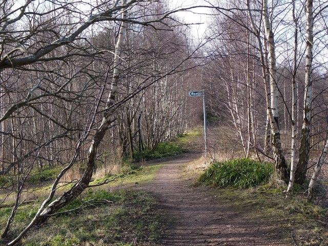 Path junction, former Bilston Glen Colliery