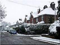 TL1314 : Amenbury Lane by Thomas Nugent