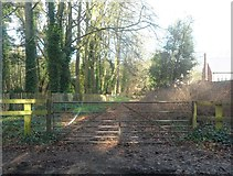 SD2806 : Gated Track near Shorrock's Hill by Anthony Parkes