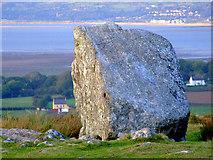 SS4990 : Arthur's Stone - Maen Ceti by Stella Elphick