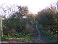 TM4562 : Grimsey's Lane Bridleway to Alexander Wood & B1353 by Adrian Cable