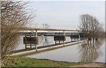 SK8174 : Dunham Toll Bridge over the Trent by J.Hannan-Briggs