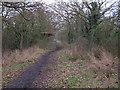 TL8405 : Maldon Wick Nature Reserve Path by Roger Jones