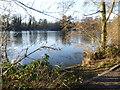 TQ5156 : West Lake at Sevenoaks Wildlife Reserve by Marathon