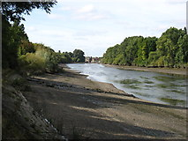 TQ1776 : The River Thames near Kew by David Purchase