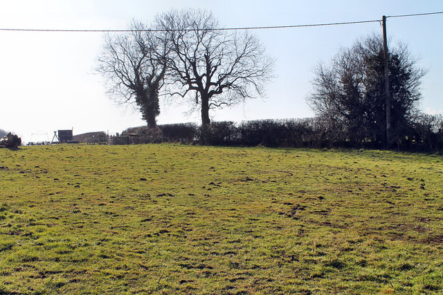 Public Footpath across field