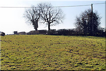 SK7259 : Public Footpath across field by J.Hannan-Briggs